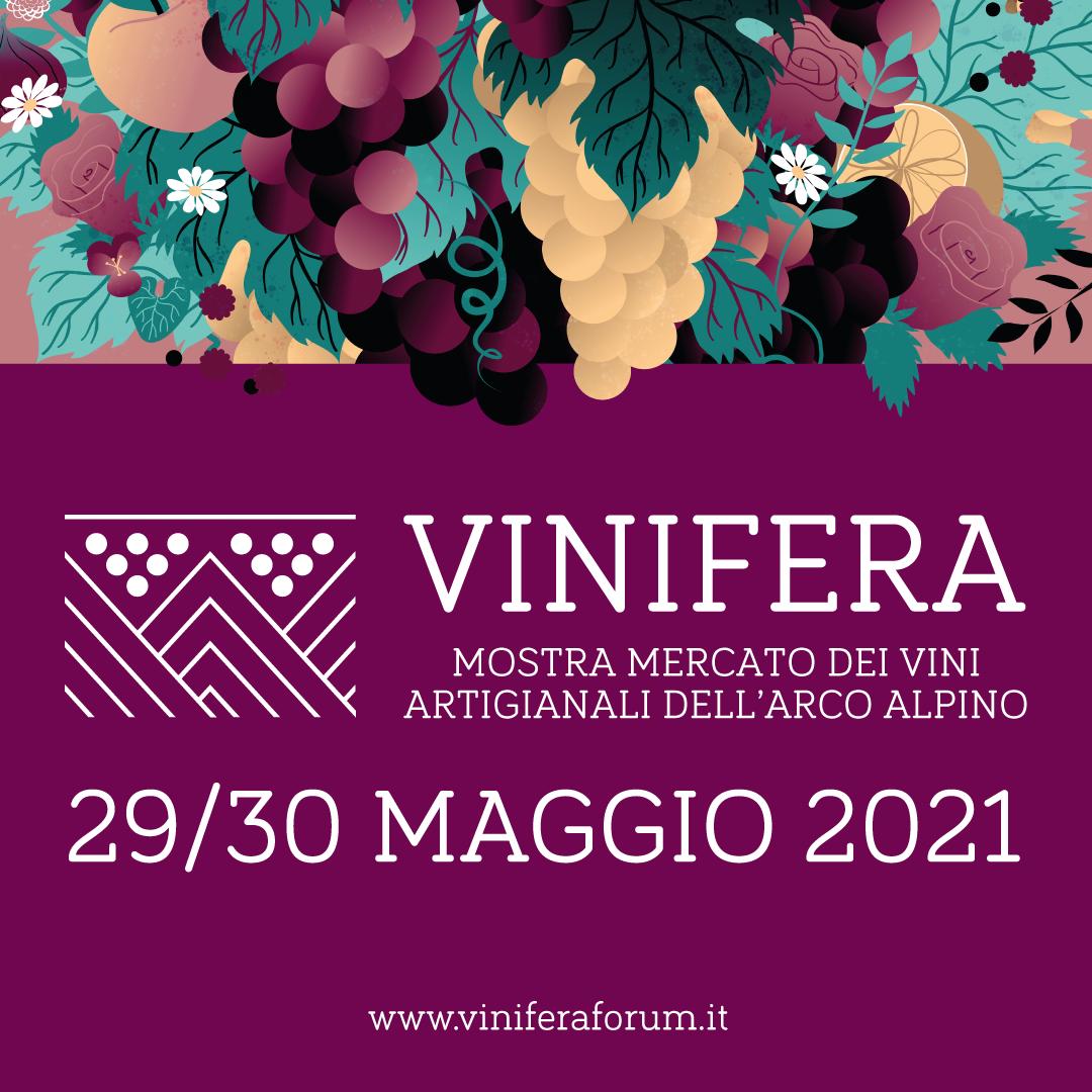 Vinifera 2021.png